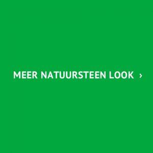 natuurlijke look tegels
